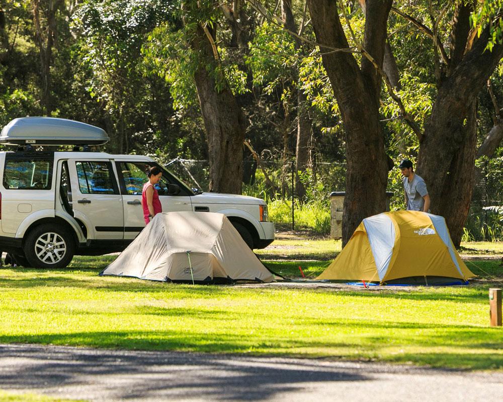 Camping area at Jimmys Beach caravan park